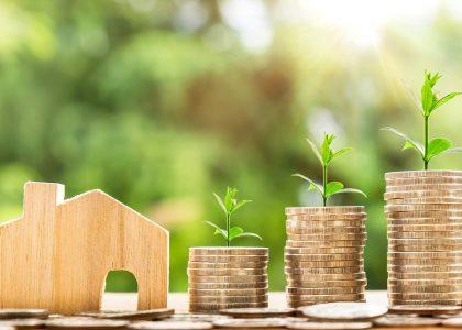 agent immobilier techniques webmarketing